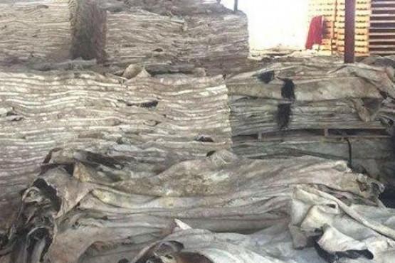 Senasa certifica la primera exportación de cueros de Chubut hacia China