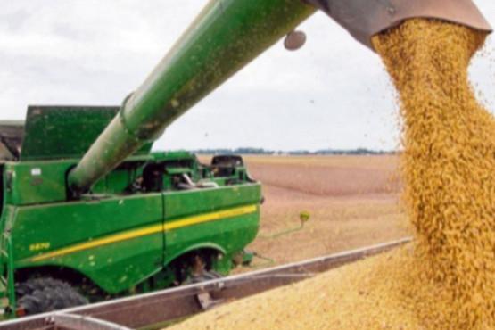 La CAF ratifica su postura sobre la no intervención de los mercados