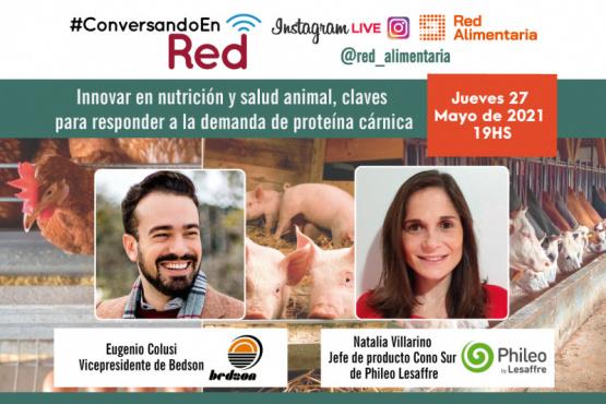 Innovar en nutrición y salud animal, claves para responder a la demanda de proteína cárnica