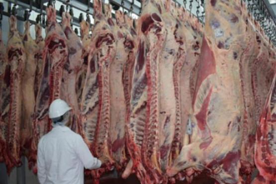 El IPCVA analiza los efectos negativos del cierre parcial a las exportaciones de carne
