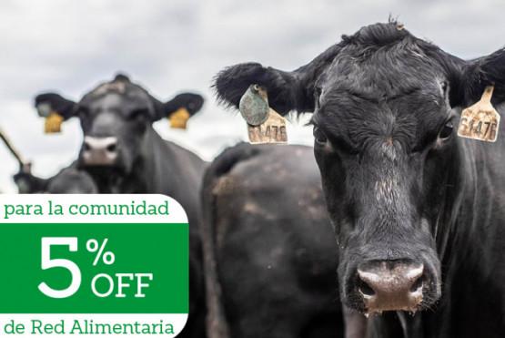 ¡Últimos días inscripción! Diplomatura en calidad de carne