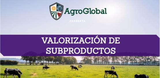 Valorización de subproductos bovinos